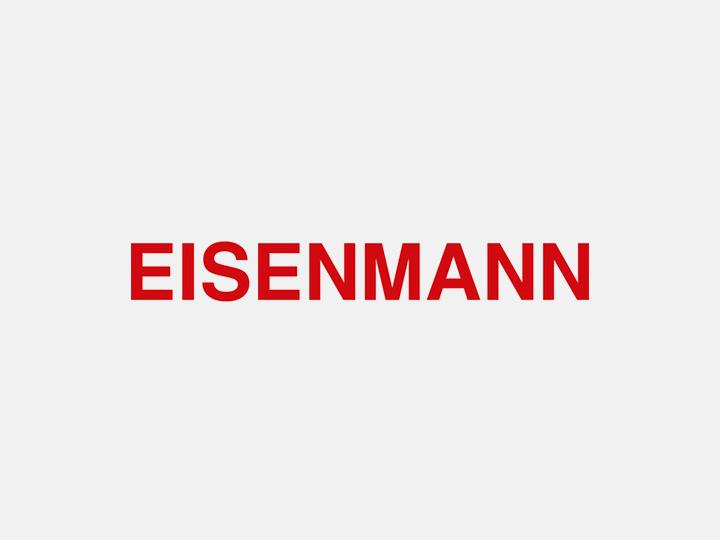 Motus Coaching Referenz Eisenmann